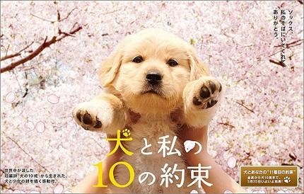 私と犬の10の約束